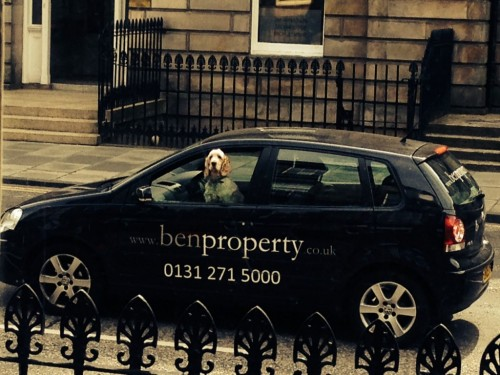 Ben-Property-Staff-1024x768