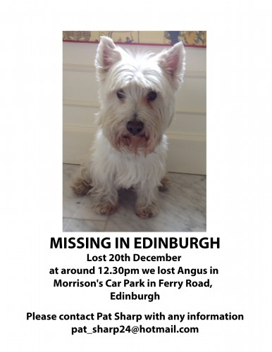 Missing Angus
