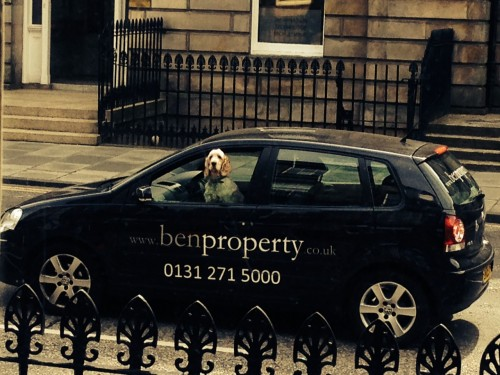 Ben Property Staff